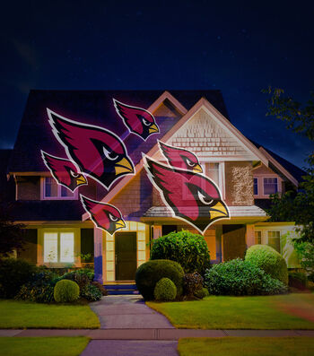 Arizona Cardinals Team Pride Light