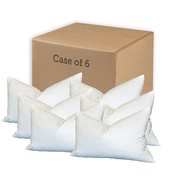 "Special Value Case of Six Feather Pillows-14"" X 18"""