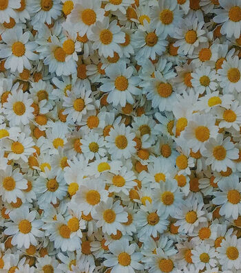 """Easter Cotton Fabric 44""""-Photo Real Daisey"""